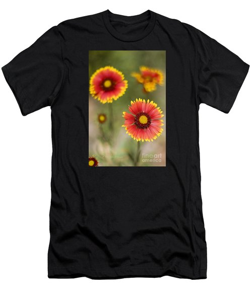 Gaillardia 'arizona Sun' Men's T-Shirt (Athletic Fit)
