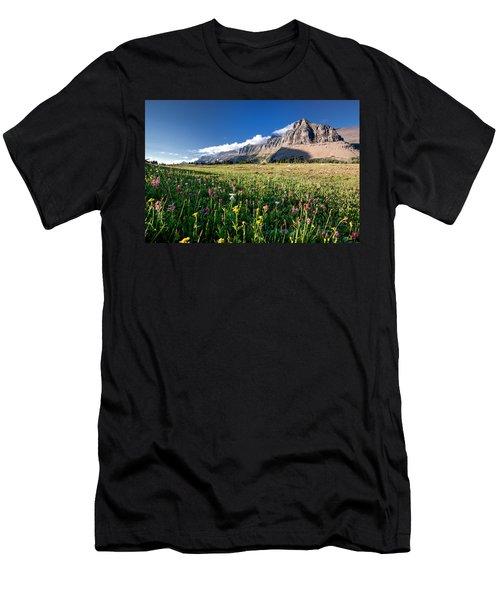 Garden Wall At Dusk Men's T-Shirt (Athletic Fit)