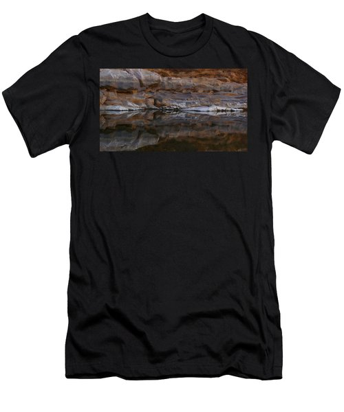 Gateway Men's T-Shirt (Slim Fit) by Evelyn Tambour