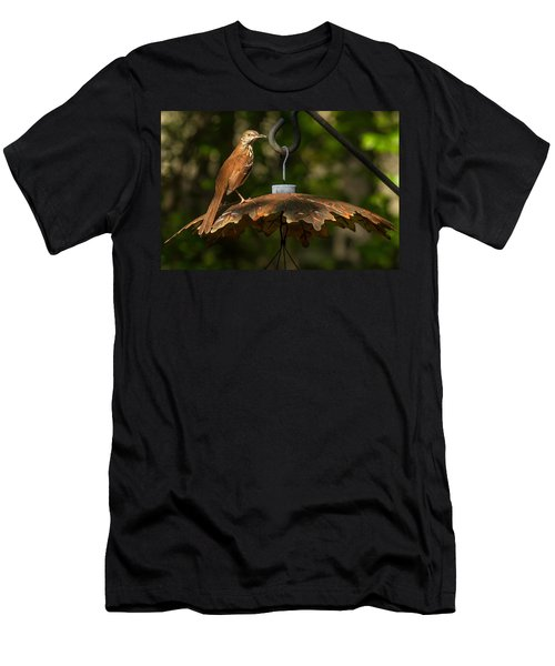 Men's T-Shirt (Slim Fit) featuring the photograph Georgia State Bird - Brown Thrasher by Robert L Jackson