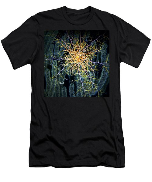 Giant Basket Star At Night Men's T-Shirt (Athletic Fit)