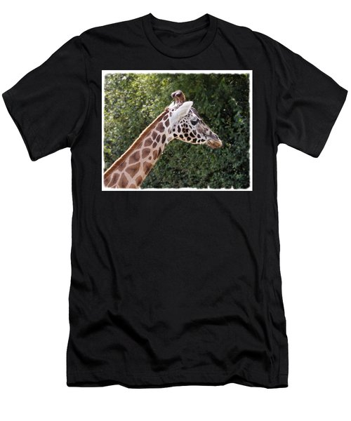 Giraffe 01 Men's T-Shirt (Athletic Fit)