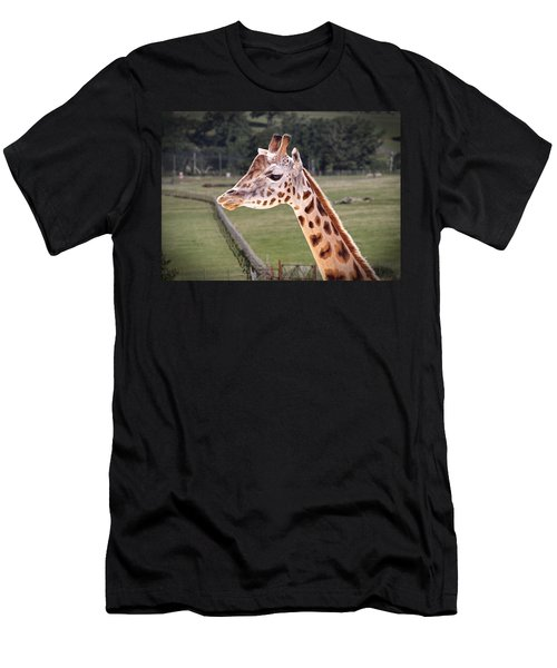 Giraffe 02 Men's T-Shirt (Athletic Fit)