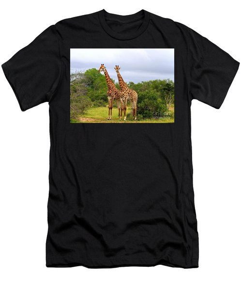 Giraffe Males Before The Storm Men's T-Shirt (Athletic Fit)