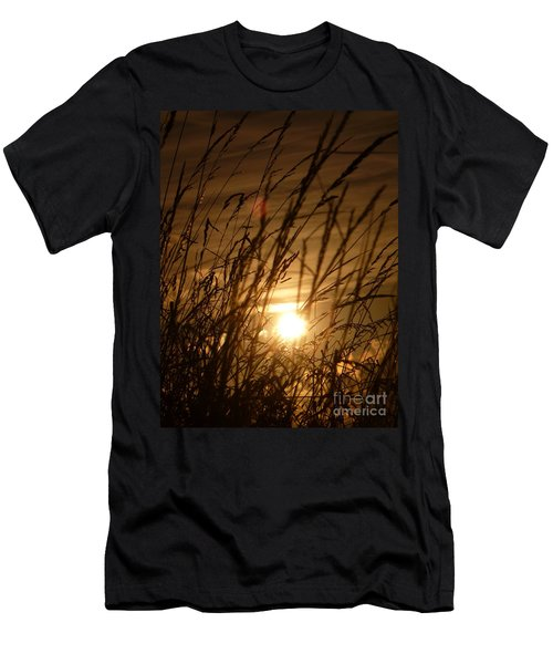 Glow Through The Grass Men's T-Shirt (Athletic Fit)