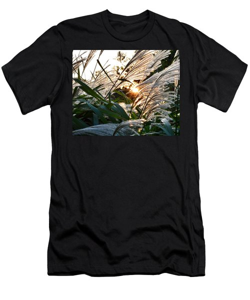 Glowing Pampas Men's T-Shirt (Athletic Fit)