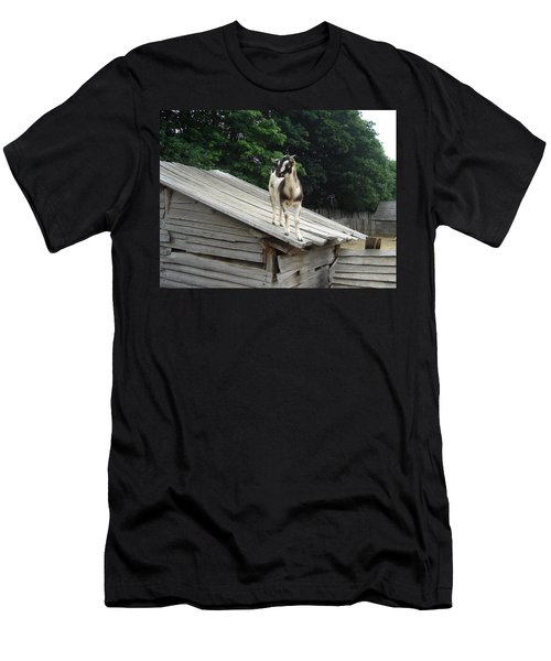 Goat On The Roof Men's T-Shirt (Athletic Fit)