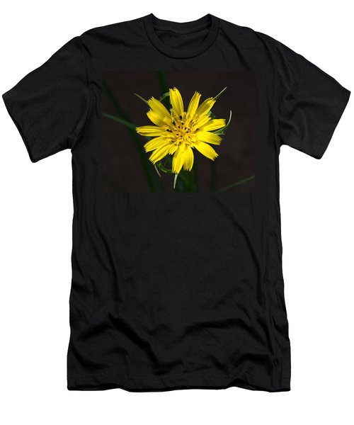 Goats Beard Flower Men's T-Shirt (Athletic Fit)