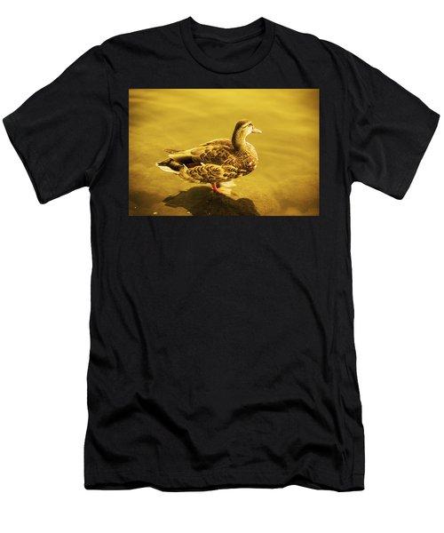 Golden Duck Men's T-Shirt (Athletic Fit)