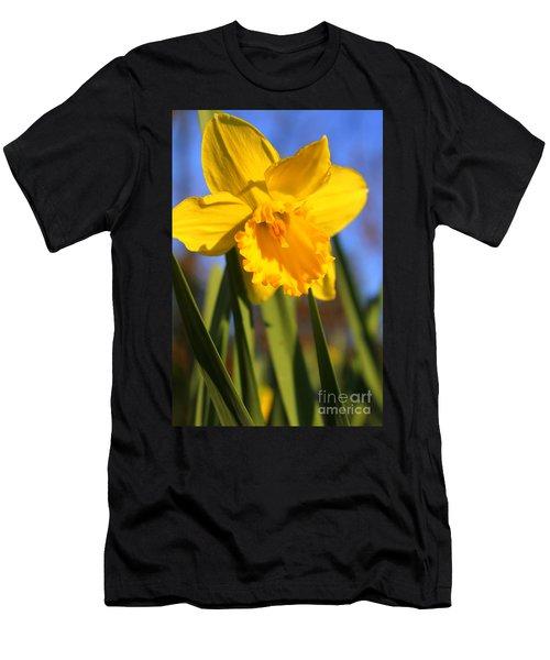 Golden Glory Daffodil Men's T-Shirt (Slim Fit) by Kathy  White