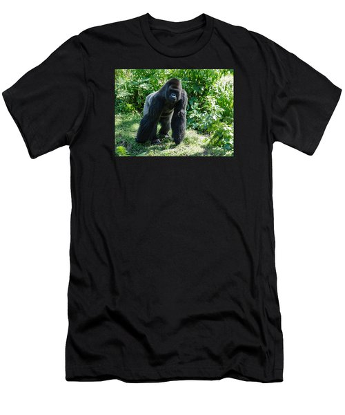 Gorilla In The Midst Men's T-Shirt (Athletic Fit)