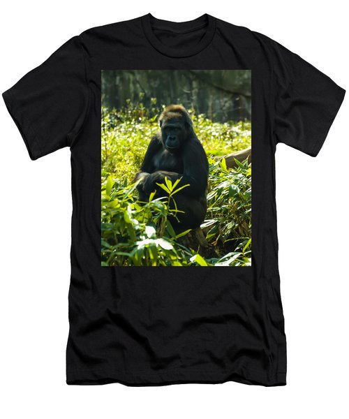 Gorilla Sitting On A Stump Men's T-Shirt (Slim Fit) by Chris Flees