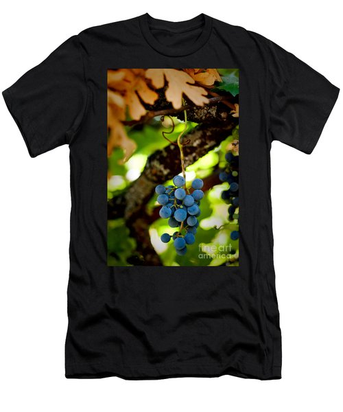 Grape Cluster Men's T-Shirt (Athletic Fit)