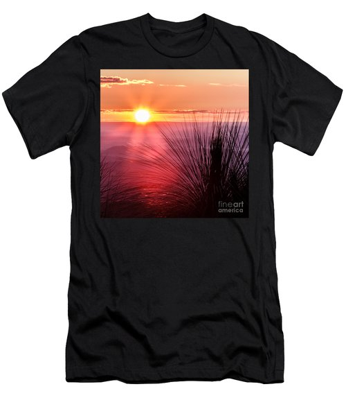 Grasstree Sunset Men's T-Shirt (Athletic Fit)