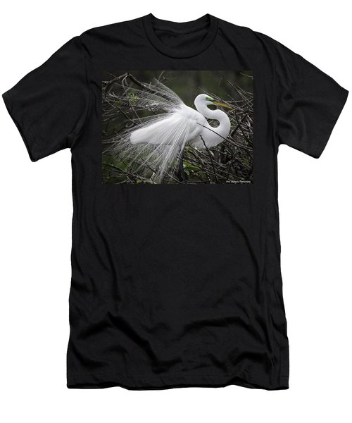 Great Egret Preening Men's T-Shirt (Athletic Fit)