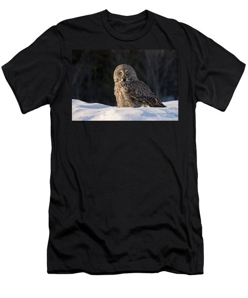 Great Gray Owl In Snow Men's T-Shirt (Athletic Fit)