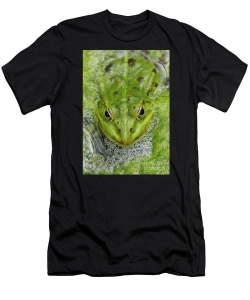 Green Frog Men's T-Shirt (Slim Fit) by Matthias Hauser
