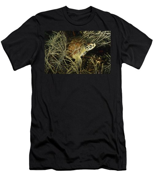 Green Turtle In Soft Corals Men's T-Shirt (Athletic Fit)