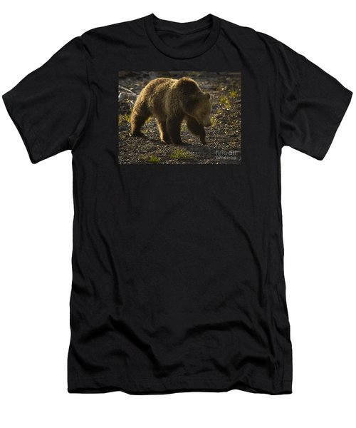 Grizzly Bear-signed-#4435 Men's T-Shirt (Athletic Fit)