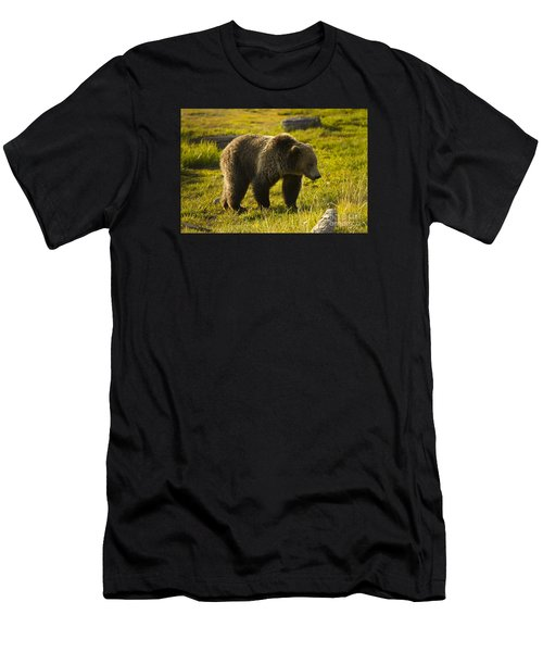 Grizzly Bear-signed-#4477 Men's T-Shirt (Athletic Fit)