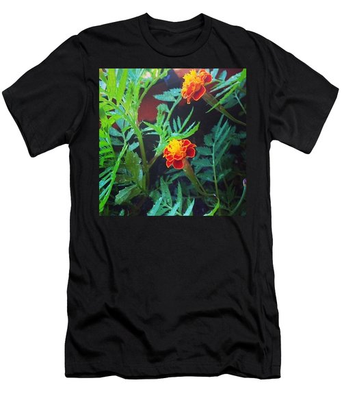 Beautiful Marigolds Men's T-Shirt (Athletic Fit)