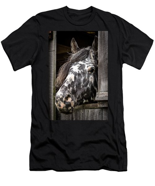 Guard Horse-what's The Password? Men's T-Shirt (Athletic Fit)