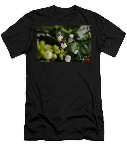 Gypsophilia Hover Fly Men's T-Shirt (Athletic Fit)