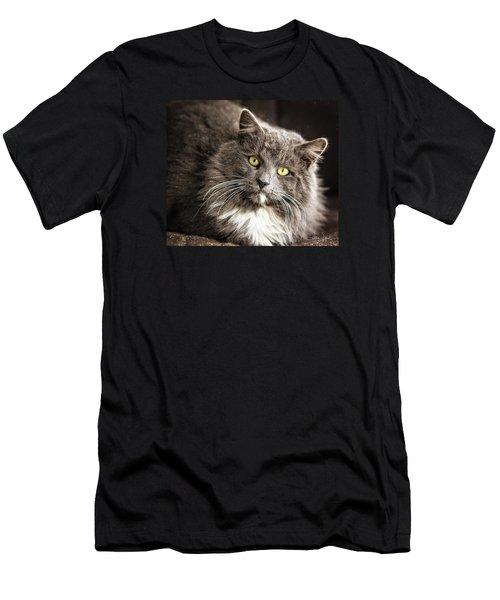 Hairy Ears Men's T-Shirt (Slim Fit) by Joan Davis