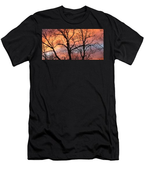 Hawk At Sunrise Men's T-Shirt (Athletic Fit)