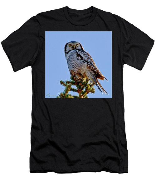 Hawk Owl Square Men's T-Shirt (Athletic Fit)