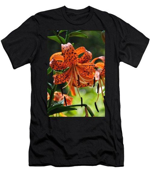 Heirloom Beauty Men's T-Shirt (Athletic Fit)