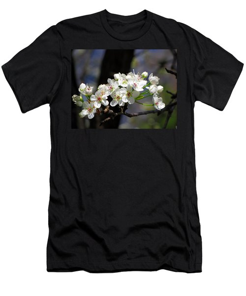 Hello Spring Men's T-Shirt (Slim Fit)