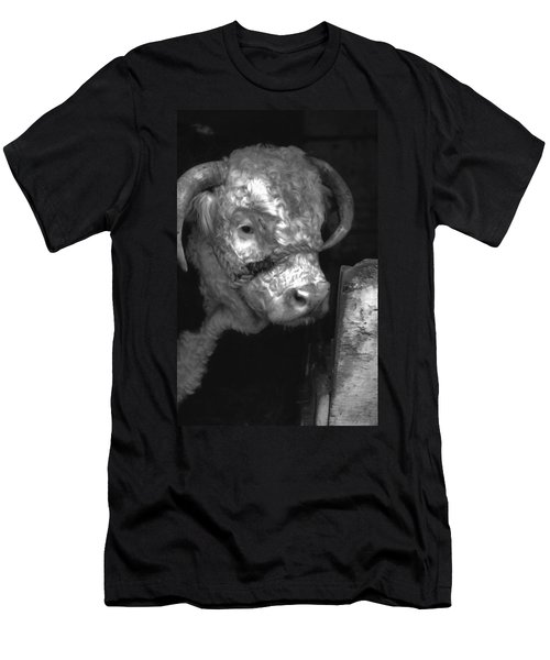 Hereford Bull In Black And White Men's T-Shirt (Slim Fit) by Cathy Anderson