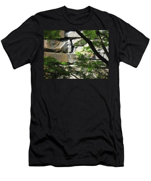 Hidden Waterfall Men's T-Shirt (Slim Fit) by David Trotter