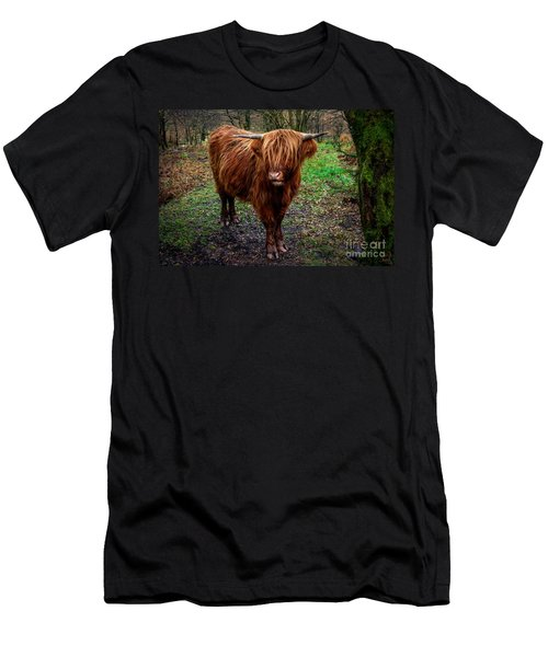 Highland Beast  Men's T-Shirt (Slim Fit) by Adrian Evans