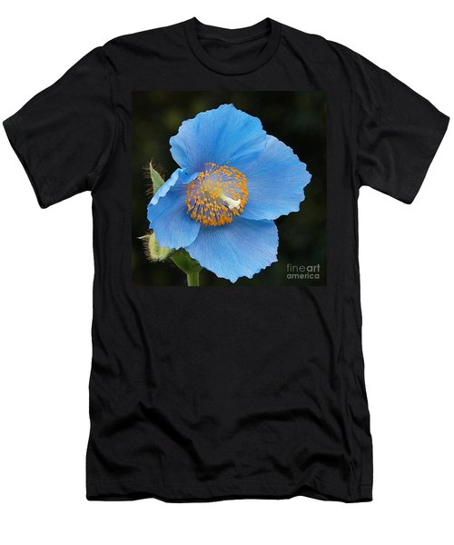 Himalayan Gift -- Meconopsis Poppy Men's T-Shirt (Athletic Fit)