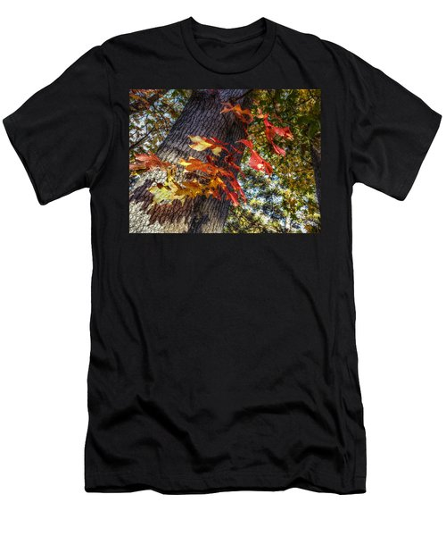 Hints Of Fall Men's T-Shirt (Slim Fit) by Linda Unger