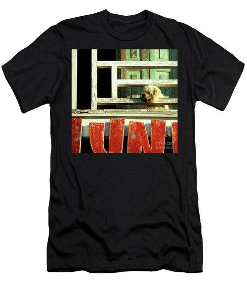 Hoi An Dog 02 Men's T-Shirt (Athletic Fit)
