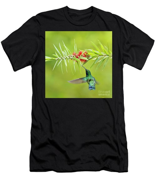 Honey Sucking Men's T-Shirt (Athletic Fit)