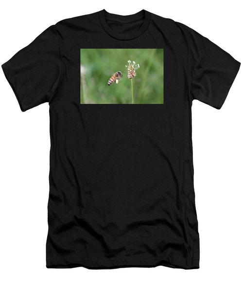 Honeybee And English Plantain Men's T-Shirt (Athletic Fit)