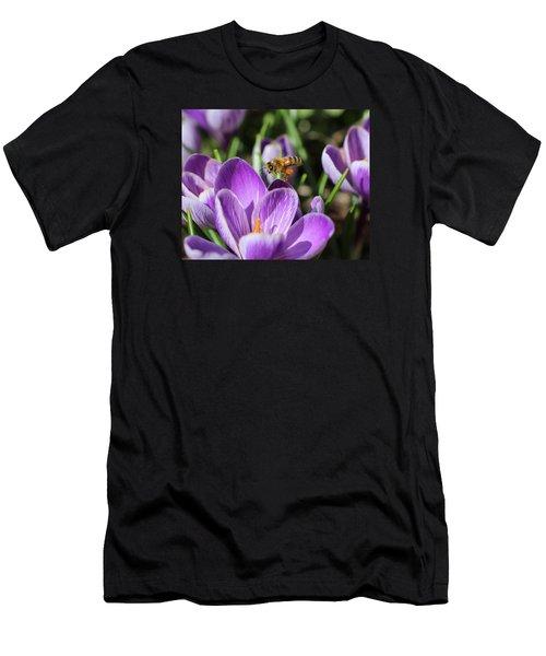 Honeybee Flying Over Crocus Men's T-Shirt (Slim Fit) by Lucinda VanVleck