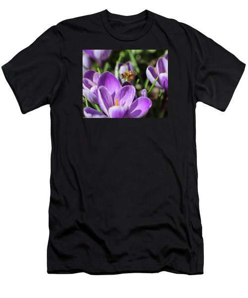 Honeybee Flying Over Crocus Men's T-Shirt (Athletic Fit)