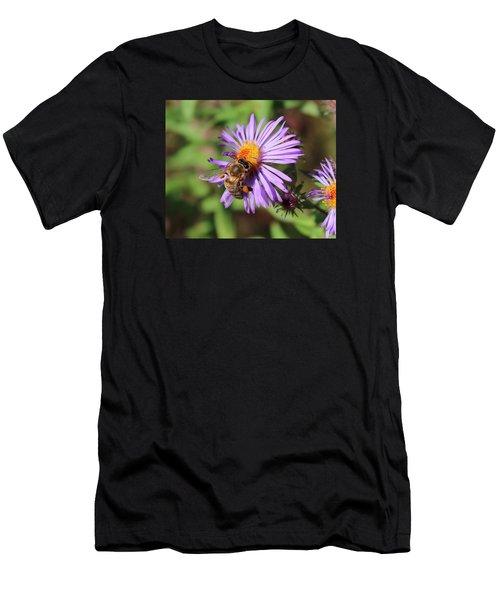 Honeybee On Purple Wild Aster Men's T-Shirt (Athletic Fit)