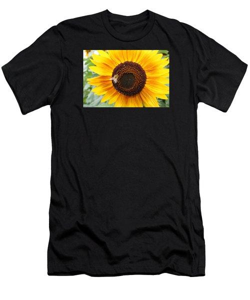 Honeybee On Small Sunflower Men's T-Shirt (Athletic Fit)