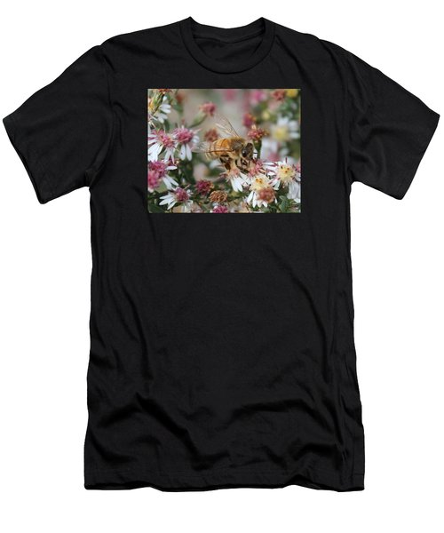Honeybee Sipping Nectar On Wild Aster Men's T-Shirt (Athletic Fit)