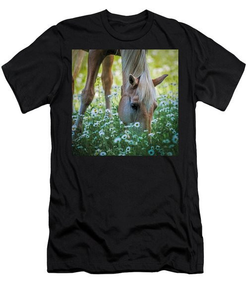 Horse And Daisies Men's T-Shirt (Slim Fit) by Paul Freidlund