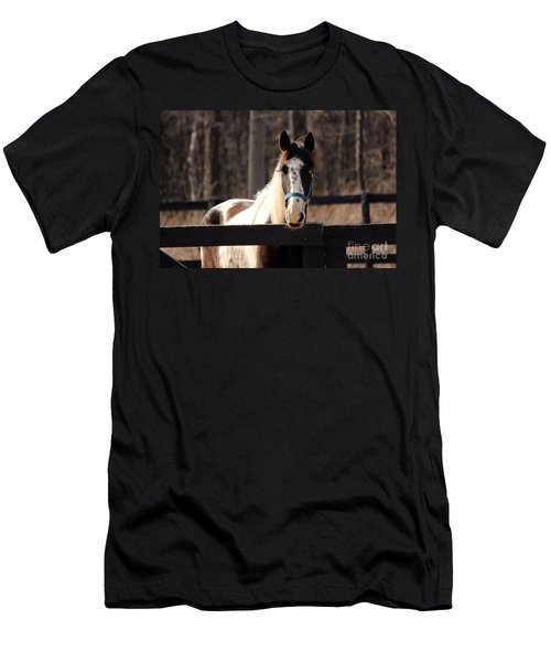 Horse At The Gate Men's T-Shirt (Athletic Fit)