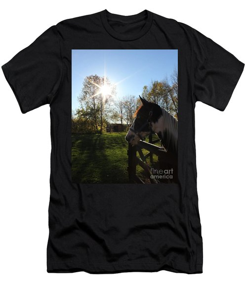 Horse With Sunburst Men's T-Shirt (Athletic Fit)