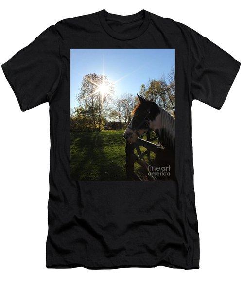 Horse With Sunburst Men's T-Shirt (Athletic Fit)