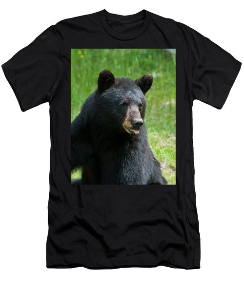 Hot Day In Bear Country Men's T-Shirt (Athletic Fit)